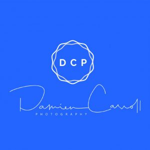 Logo for DCP